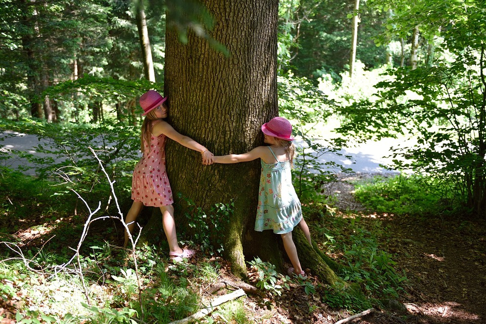 Kids hugging a tree